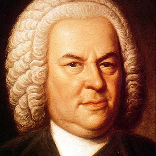 Bach: Sonata for Violin solo no 2 in A minor-Andante