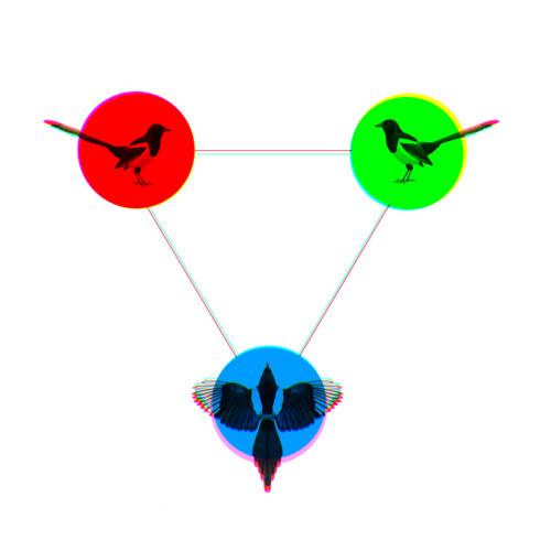 Three way Magpie
