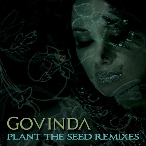 Govinda PTS (D.V.S* Remix)