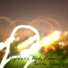 Flightless Bird, American Mouth Guitar (instrumental) Cover