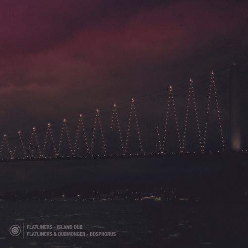 Flatliners & Dubmonger - Bosphorus Dub  • OUT NOW