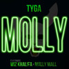 Tyga ft Wiz Khalifa - Molly (DJ Rusi MC Dubstep Remix)