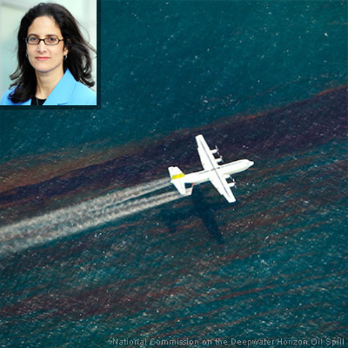2013-04-19 Chemical Dispersants Used in Oil Spill Cleanup Need Closer Look