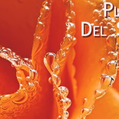 Dreamhit- La Playa Del Sol (Menegatti & Fatrix Remix) ( Dj Andy Rework ) Free Download