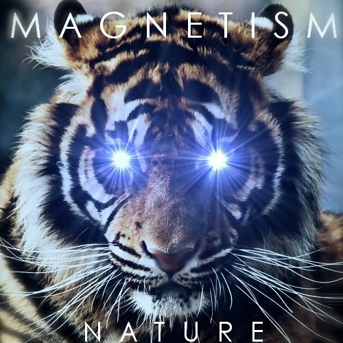 Magnetism - Helsinki