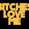 Lil Wayne - Bitches Love Me (Bitch Remix)