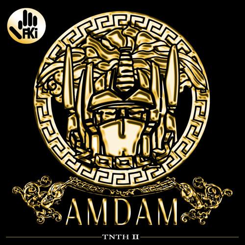 FKi - AMDAM (DIP)