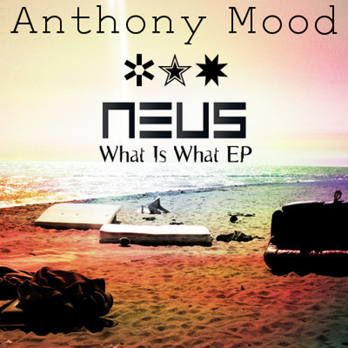 NEUS - What is what (Anthony Mood Remix)