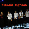 One Direction Teenage Dirtbag (Cover)