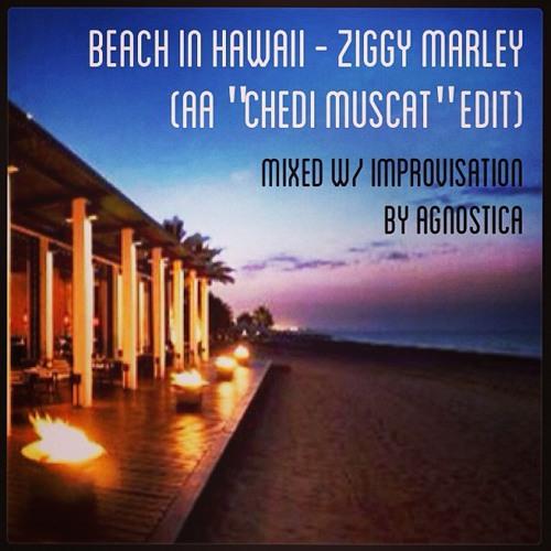 Ziggy Marley/Agnostica - Beach in Hawaii (AA 'Chedi Muscat' Edit)