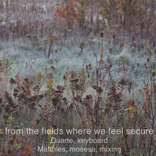 From the fields where we feel secure (Duarte, keyboard, Matthies, mosesa, mixing)