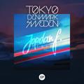 Tokyo Denmark Sweden When it Breaks (Jordan F Remix) Artwork