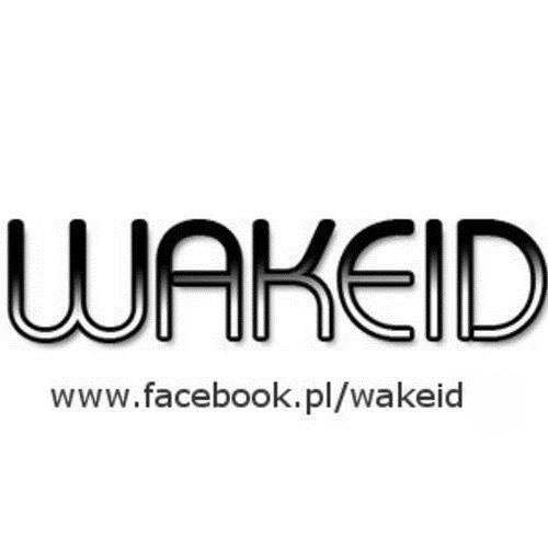 Wakeid-Last Day On Earth (Original Mix)