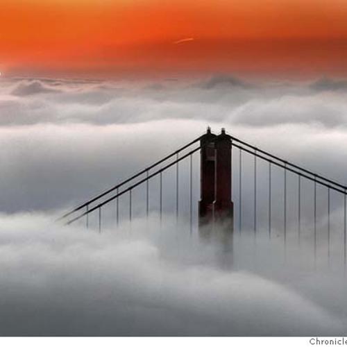 Fog(70L)