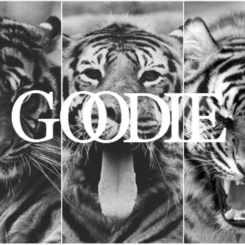 Clothes and Hoes - GOODIE