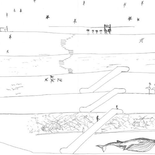 07. A Wild Chase, Emiliano Zelada - Level 4