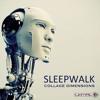 Sleepwalk - Gripa