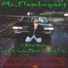 Mr.Flamboyant (I Am A Southern Boy) Mp3 File