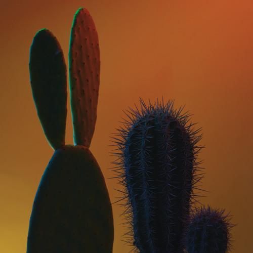 QUITAPENAS Mas Tropical (Jaytram of Sinkane Remix)