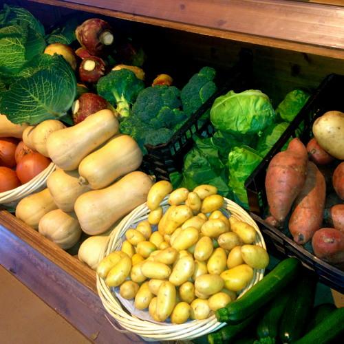 The Nature Of Organic Farming