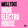 Indie | Electro | House Mix 1 | April 2013