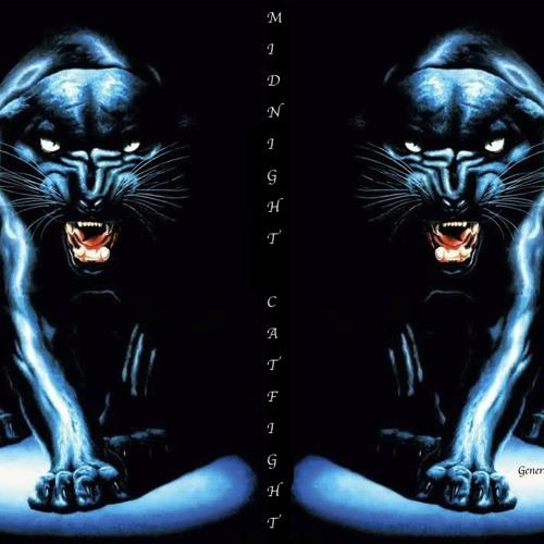 Midnight Catfight
