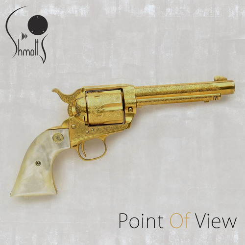 Point Of View - Radio Edit
