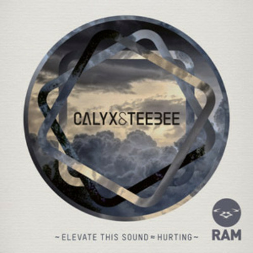 Calyx & TeeBee - Elevate This Sound