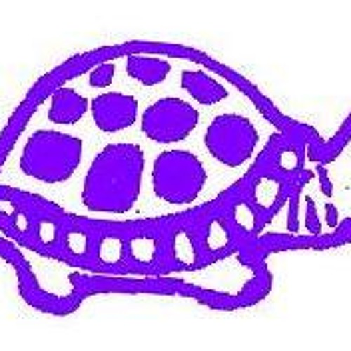 A Purple Turtle