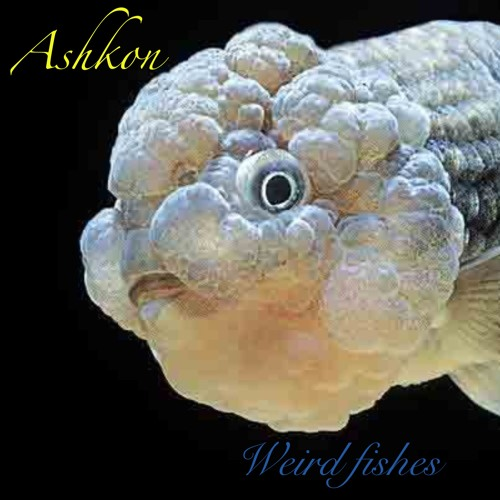 Weird Fishez (Remix) ft Ashkon