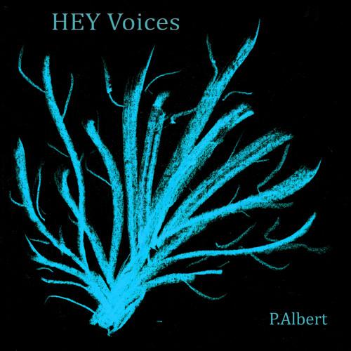 Hey Voice