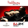 Haddaway - What Is Love (DJ JIM (RU) Remix) FeedBass Records [Teaser]