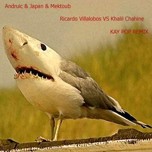 Andruic & Japan & Mektoub - Ricardo Villalobos VS Khalil Chahine - Kay Pop Remix