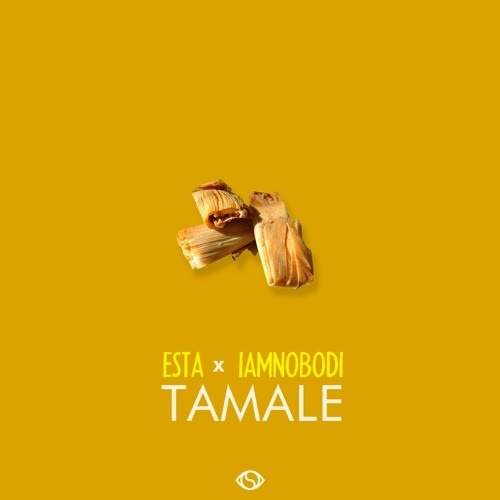 Esta x IAMNOBODI - Tamale