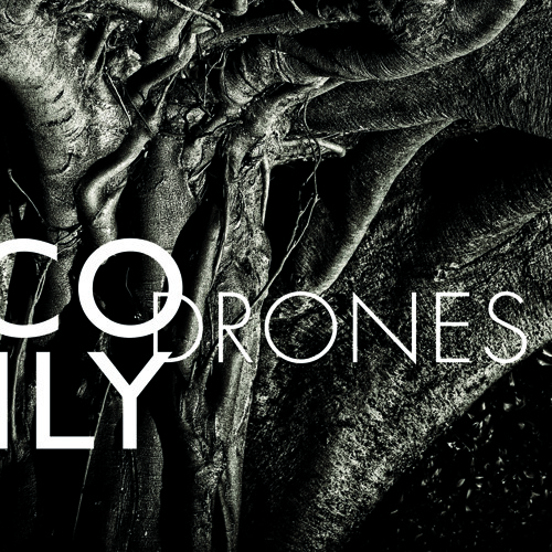 Bruce Brubaker: Nico Muhly's Drones - Part III (The 8th Tune)