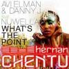 Avi Elman & Danny J feat. Nuwella - What's The Point (H.Chentu Rework)