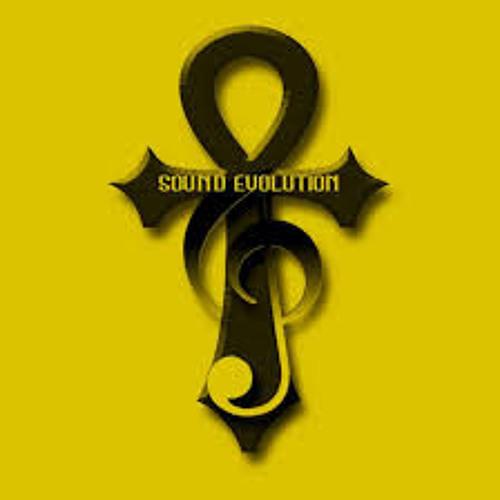 Sound Evolution II