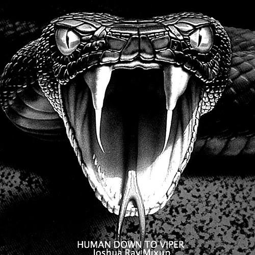 Chuckie & Dzeko & Torres vs Nicky Romero vs Dannic - Human Down To Viper (Joshua Ray Mixup)