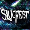 Slugfest - B.W.M.B [MPFREE]
