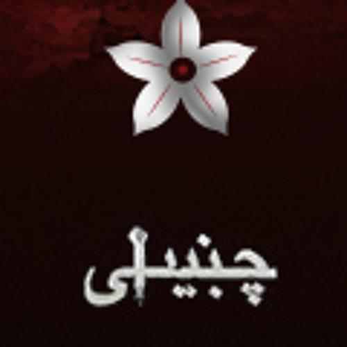 Inqilaab (Chambaili 2013) | PakistaniCinema