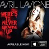 Here's To Never Growing Up - Avril Lavigne (Acoustic Live!) (With Toni Relja) NEW SONG #SUPORTAVRIL