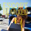 Karawane (Leftside Wobble Mix) from the Escort Remixed compilation
