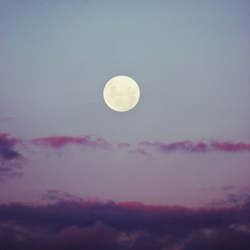 Perfect Moon (feat. Ange) (Egorythm Remix)