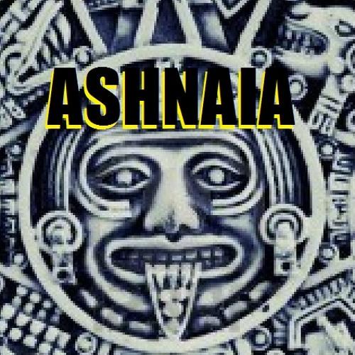 Ashnaia Project / Genetic Nation / (Soundcloud Exclusive Download)