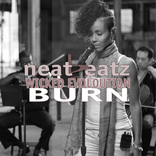 Wicked Evolution - Burn (Sexy House Mix) Produced by Neatbeatz