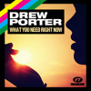 DREW PORTER - WHAT YOU NEED RIGHT NOW - BASSMONKEYS [Preview]