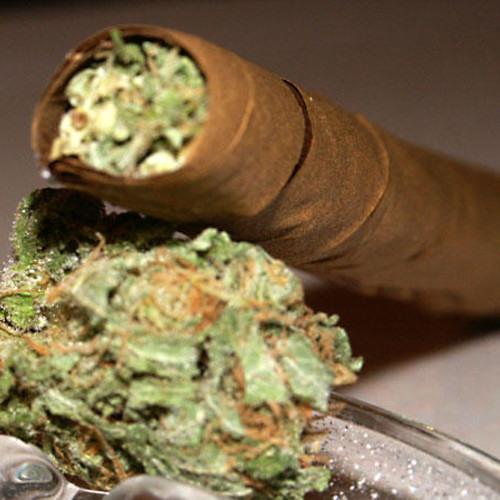 Derdy/Attache - Collie Weed