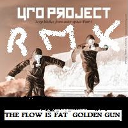 The Flow Is Fat -  UFO Project (Golden Gun Remix)