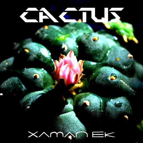 Xaman Ek / Cactus / Find Me
