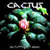 Xaman Ek / Cactus / Teno's Mountain Melting